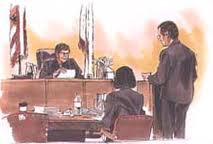 criminal trial pocess The criminal procedure rules (crimpr) govern the practice and procedure of  the  and a robust adversarial process are essential features to our legal system.