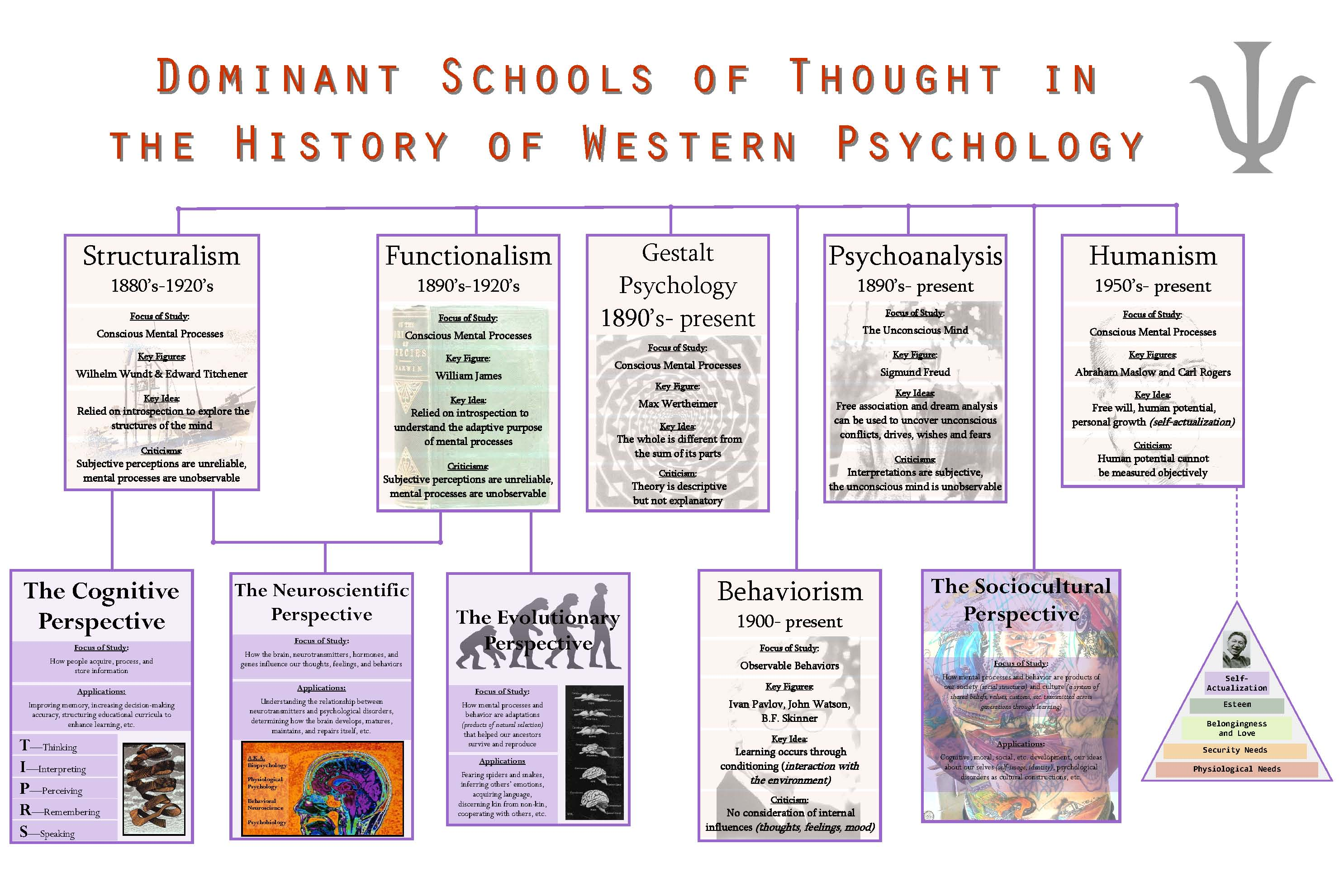 a study on the psychological theories of behaviorism psychoanalysis and humanism Humanism is a psychological perspective that emphasizes the study of the whole person humanistic psychologists look at human behavior not only through the eyes of the observer, but through the eyes of the person doing the behaving sometimes the humanistic approach is called phenomenological.
